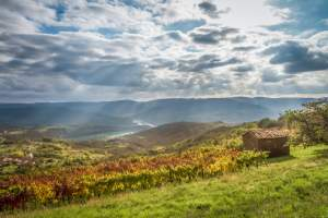 Hiking trail: Grdoselo - Zelengrad