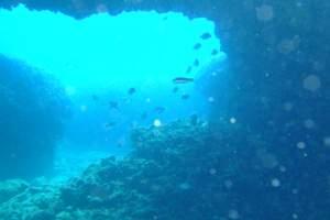 Diving centre Scuba Libre