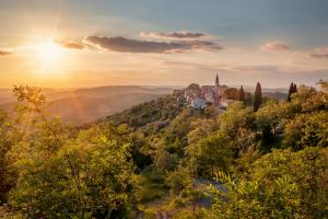 A Scent of Istria in Your Homes