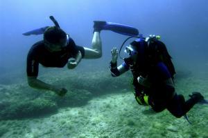 Diving centres: Caretta