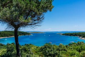 Advices for Visitors Currently in Istria Due to COVID-19 Spread