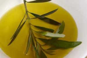 Flos Olei 2020: Istria declared the best olive oil region in the world