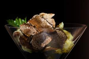 Top 5 Truffle Dishes in Istria