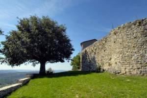 The Roch Castle