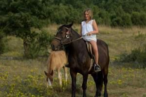 Horseback riding club Medulin