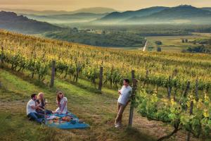 New edition of Istra Gourmet 2019-2020 released