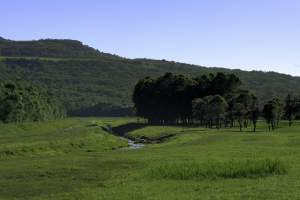 Hunting associations: Central Istria