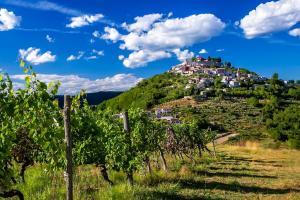 Kaštelir-Labinci and Motovun nominated for the Best Tourism Villages