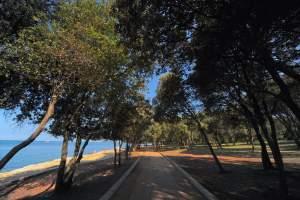 Hiking trail: Nature walk along the coast