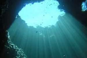 Reefs: Otok Fraškerić - Fraškerić island (27)
