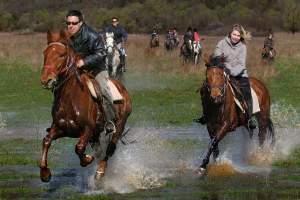 Horseback riding club Capall Hrboki