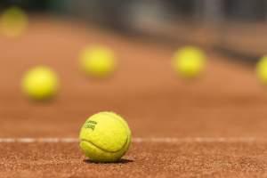 Tennis courts: Medulin