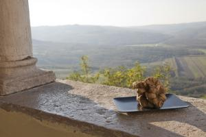 Tavern - The Istrian Tradition of Hedonism