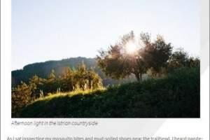 USTOA Blog: Touring Croatia
