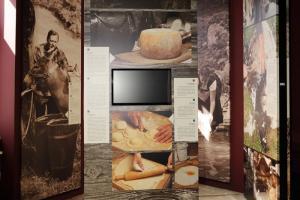 Musei e collezioni
