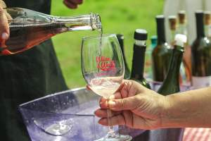 Top 5 Wine Events in Istria
