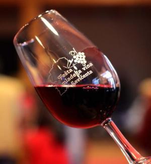 Festa del vino novello