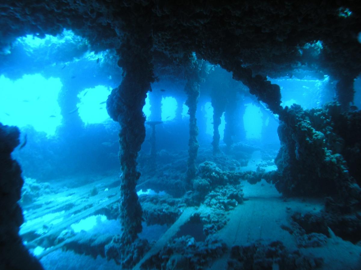 Top 5 shipwrecks along the coast of Istria | Experiences in