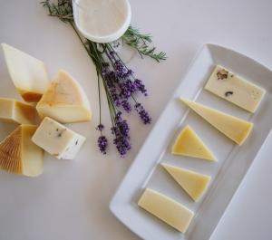 Milk & Cheese Bar Latus