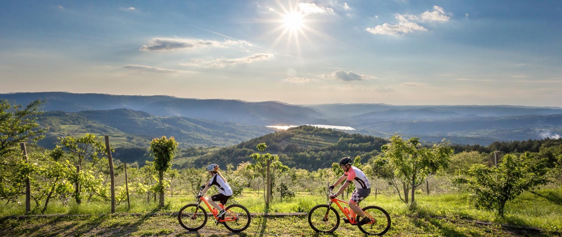 Službeni turistički portal Turističke zajednice Istarske županije