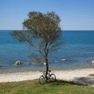 Plaža kampa Aminess Sirena