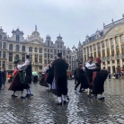 Istra u Bruxellesu