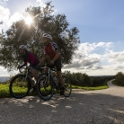 Cycling: Central Istria