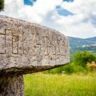 Istrische Glockenblume - der Schmuck von Plomin