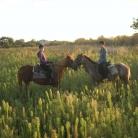 Samy's Ranch